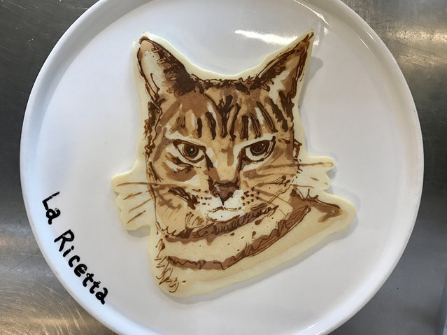 A pancake that looks like a cat, in Zama City, Japan. (Photo by Keisuke Inagaki/Barcroft Images)
