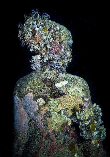 """Night series"". Underwater Sculpture, Museo Subacuático de Arte, Cancun. (Photo by Jason deCaires Taylor/UnderwaterSculpture)"