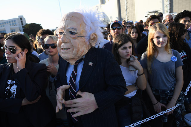 A person dressed as presidential candidate, Bernie Sanders is seen at a rally at Santa Monica High School on Monday May 23, 2016 in Santa Monica, CA. The primary in California is June 7th. (Photo by Matt McClain/The Washington Post)