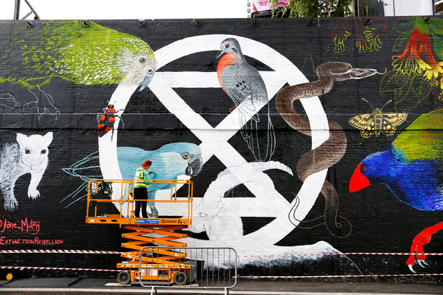Jane Mutiny paints a Extinction Rebellion logo onto the side of a building in London, England on October 6, 2019. (Photo by Henry Nicholls/Reuters)