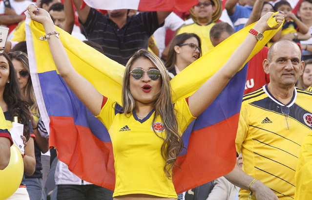 A fan of Colombia cheers her team on during a Quarterfinal match between Colombia and Peru at MetLife Stadium as part of Copa America Centenario US 2016 on June 17, 2016 in East Rutherford, New Jersey, US. Colombia won the 0-0 game by penalty kicks. (Photo by Chris Szagola/LatinContent/Getty Images)