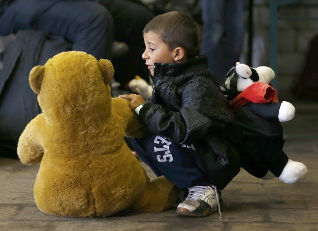 A young boy plays with a teddy bear he received at the registration point for migrant arrivals at the main station in Munich, Germany September 5, 2015. (Photo by Michael Dalder/Reuters)