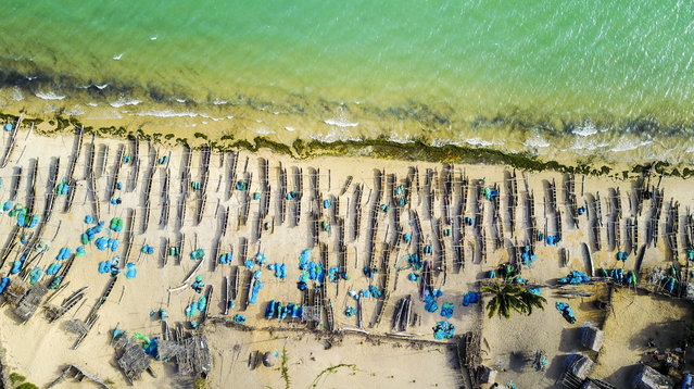 Wooden fisherman boats are seen at the Ifaty beach in Toliara, Madagascar on September 3, 2017. (Photo by Ahmet Izgi/Anadolu Agency/Getty Images)