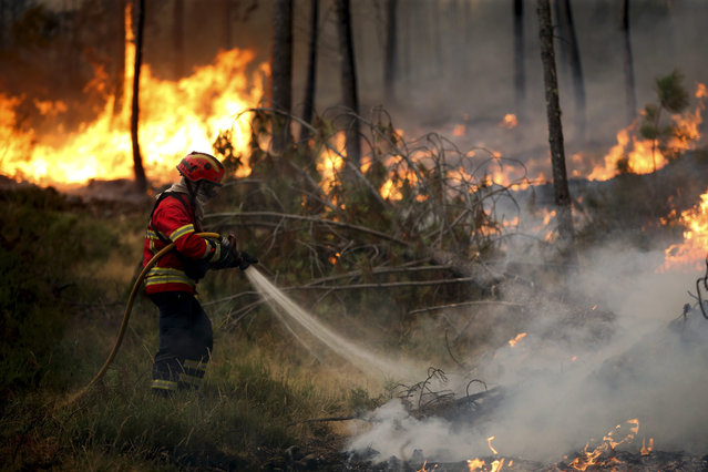Firefighters tackle a forest fire in Regoufe, Arouca, Portugal, 09 August 2016. (Photo by Estela Silva/EPA)