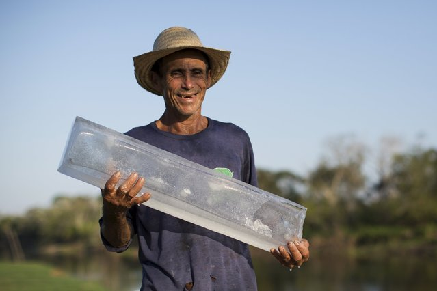Francisco da Silva Vale, 61, poses with a block of ice produced on a solar-powered ice machines at Vila Nova do Amana community in the Sustainable Development Reserve, in Amazonas state,  Brazil, September 22, 2015. (Photo by Bruno Kelly/Reuters)