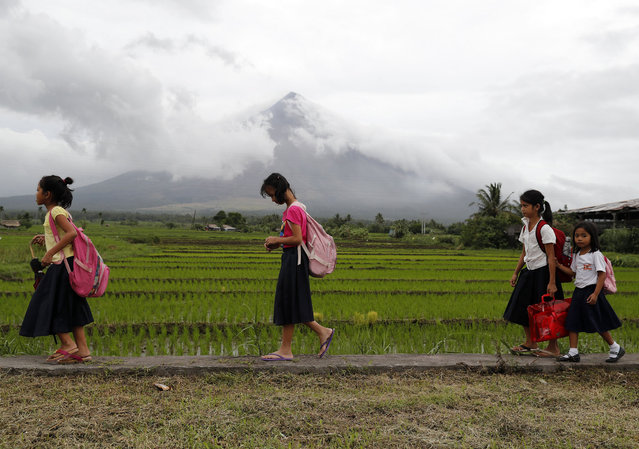 Filipino school children walk at the foot of rumbling Mayon Volcano in the town of Camalig, Albay province, Philippines, 19 January 2018. According to media reports, more than 34,000 people including 8,530 families have been evacuated to 32 evacuation centers. A three-kilometer lava flow from Mayon was recorded on January 18, while 48 rockfall events, two pyroclastic density currents and one volcanic earthquake were noted, according to the Philippine Institute of Volcanology and Seismology. The Alert for Mayon remains at Level 3, and ash clouds continued to form from the volcano, which also was emitting Sulphur dioxide gas at a rate of 1,159 tons per day. (Photo by Francis R. Malasig/EPA/EFE)