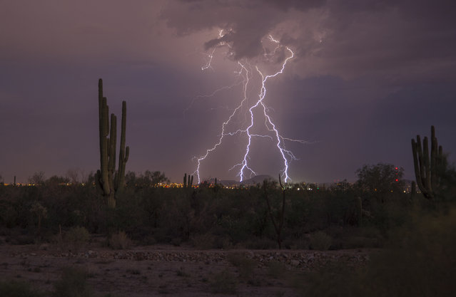 Bolts of lightning hits the city, on August 14, 2014, in Arizona. (Photo by Roger Hill/Barcroft Media)