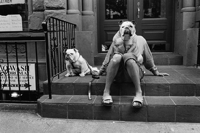 USA. New York City, 1988. (Photo by Elliott Erwitt/Magnum Photos)