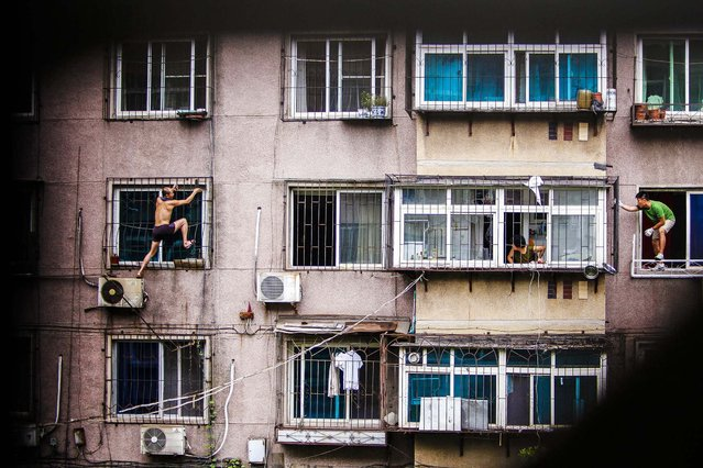 A man climbs outside a window with a knife, as his mother and a plain clothes policeman look watch him in Anshan, Liaoning province, China, on August 26, 2013. He held his mother captive in his apartment before climbing out of the window and threatening to cut himself. After several hours, he was controlled by policemen who managed to enter the house from another window with the help of his mother, local media reported. (Photo by Reuters)