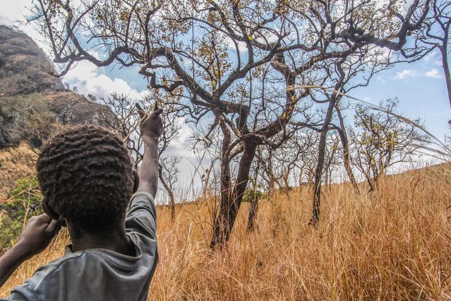 Children often go out to hunt small birds and bat with home made sling shots, Karamoja, Uganda, February, 2017. (Photo by Sumy Sadurni/Barcroft Images)