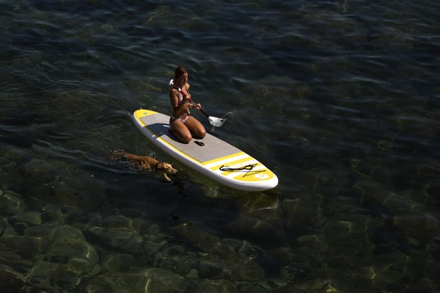 A woman paddles on top of a surfboard as her dog swims next to her in the Mediterranean Sea in Barcelona, Spain, Monday, June 29, 2015. Weather stations across Spain are warning people to take extra precautions as a heat wave engulfs much of the country, increasing the risk of wildfires. The country's meteorological agency says a mass of hot air originating in Africa is moving northwards, bringing with it until at least Monday temperatures reaching 40 °C. (Photo by Emilio Morenatti/AP Photo)