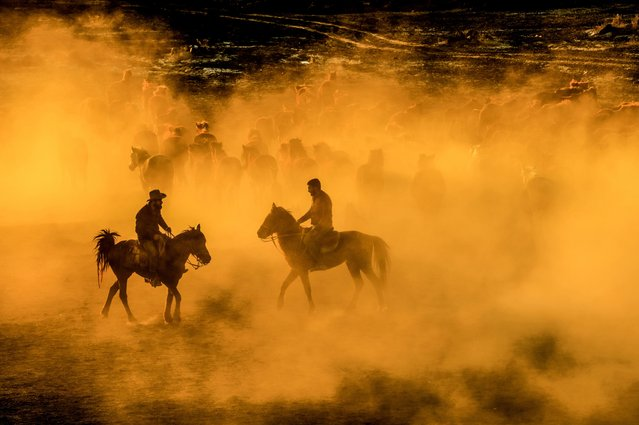 A man rides with herd of horses during the sunset at the foothills of Erciyes mountain in Kayseri, Turkey on March 28, 2017. (Photo by Ali Ihsan Ozturk/Anadolu Agency/Getty Images)