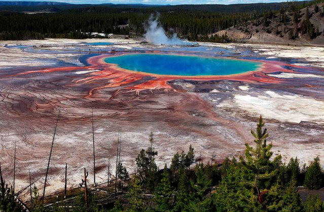 The Grand Prismatic Spring, the largest in the United States and third largest in the world, is seen in Yellowstone National Park, Wyoming, June 22, 2011. (Photo by Jim Urquhart/Reuters)