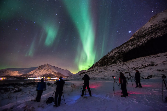 """""""Aurora Hunters"""". Photographers taking part in a photography tour on the Lofoten Islands in Norway, pull over on the side of the road to take a photo of their first ever Aurora Borealis after spotting it from their tour bus. Photo location: Rystad, Lofoten Islands, Norway. (Photo and caption by Mark Gee/National Geographic Photo Contest)"""