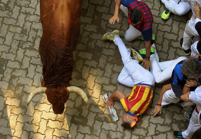 Runners fall alongside Pedraza de Yeltes fighting bulls near the entrance to the bullring during the fourth running of the bulls at the San Fermin festival in Pamplona, northern Spain, July 10, 2016. (Photo by Eloy Alonso/Reuters)