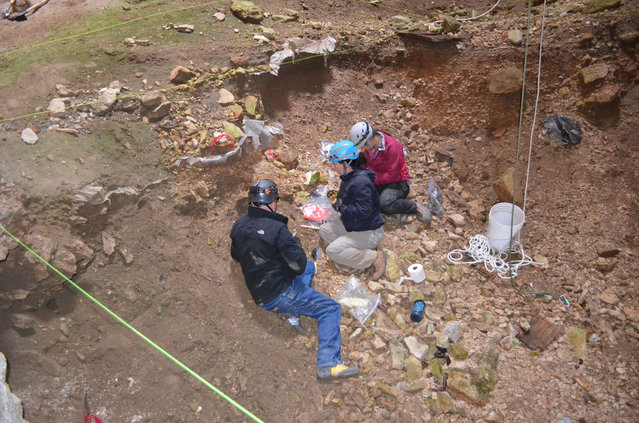 This July 2014 image provided by the Bureau of Land Management shows Justin Sipla, from left, Julie Meachen, and Jenna Kaempfer collecting samples for analysis inside the Natural Trap Cave in north-central Wyoming. The cave holds the remains of tens of thousands of animals, including many now-extinct species, from the late Pleistocene period tens of thousands of years ago. Scientists have resumed digging for the first time in more than 30 years. (Photo by AP Photo/Bureau of Land Management)