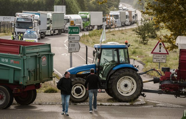 Some 60 duck farmers block roads beetween Dax and Mont-de-Marsan in Tartas, on September 15, 2017 as part of a protest action called by French farmers unions FDSEA and JA, asking for financial subsidies to resume farming following the bird flu crisis in in southwestern France. (Photo by Iroz Gaizka/AFP Photo)