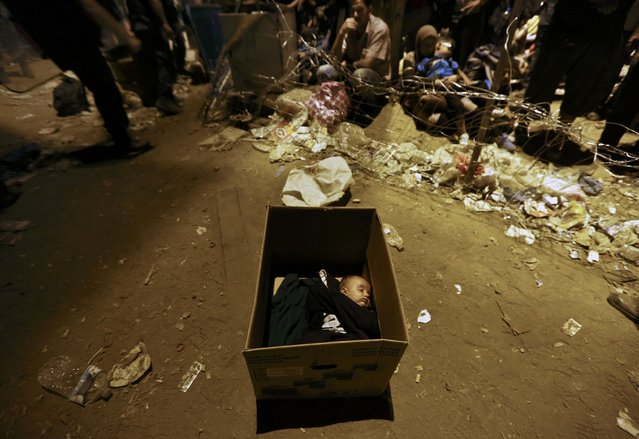 A Syrian refugee baby sleeps in a box at Geece's border with Macedonia near the village of Idomeni early morning September 7, 2015. (Photo by Yannis Behrakis/Reuters)