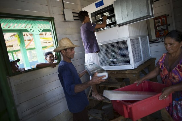 Residents unload a solar-powered ice machines at Vila Nova do Amana community in the Sustainable Development Reserve, in Amazonas state, Brazil, September 22, 2015. (Photo by Bruno Kelly/Reuters)
