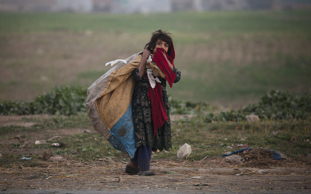 A Pakistani girl who is displaced with her family from the tribal area of Bajur where security forces are fighting against militants, collects recyclable items in Islamabad's slums, Thursday, November 20, 2014, on Universal Children's Day, which is marked annually by the United Nations. (Photo by B.K. Bangash/AP Photo)
