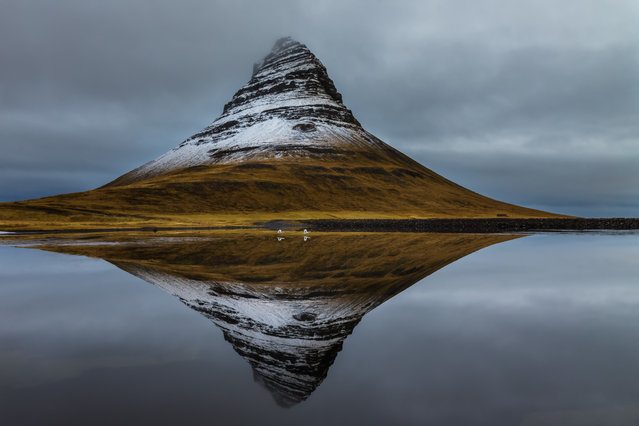 "Kirkjufell and whooper swans in Vesturland, Iceland. ""With the right amount of snow an 'eye' is revealed in the side of a mountain. It almost looks like the eye in the pyramid on the dollar bill. As I photographed, a pair of swans took flight"". (Photo by Art Wolfe/The Guardian)"