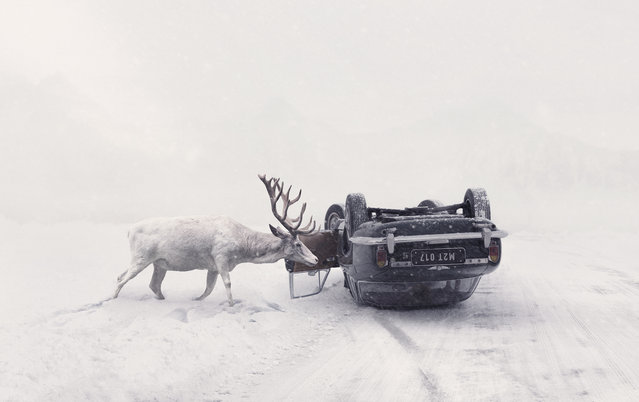 """Open enhanced and Czech Republic national award winner: Martin Stranka. """"People often ask if the animals in my animal series are real animals, and all of them are"""", Stranka told Adobe Create Magazine about this photograph, Until You Wake Up. """"When I created the components of (this image), I went to a nearby animal refuge and took photos of white deer with a 70–200 mm lens"""". (Photo by Martin Stranka/Sony World Photography Awards 2018)"""
