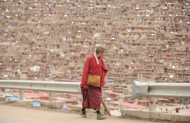 This photo taken on April 4, 2013 shows Buddhist nun looking out over housing, in Seda Monastery, the largest Tibetan Buddhist school in the world, with up to 40,000 monks and nuns in residence for some parts of the year. Seda, known to Tibetans as Serthar is located in Ganzi prefecture in the west of China's Sichuan province and has become a hotbed of protests and violence since the Tibetan uprisings of March 2008.  More than 110 Tibetans have set themselves alight since 2009, with most dying of their injuries, in demonstrations against what they view as Chinese oppression which Beijing rejects pointing to substantial investment in Tibet and other regions with large Tibetan populations, although critics say economic development has brought an influx of ethnic Han Chinese and eroded traditional Tibetan culture. (Photo by Peter Parks/AFP Photo)
