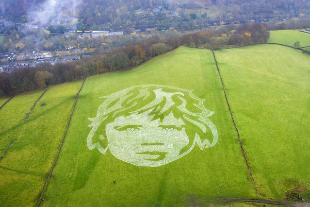 """A 110m-wide mural of a child's face adorns the hillside above Hebden Bridge on November 20, 2020 in Hebden Bridge, England. The mural covering 11,000 square metres was created by local artists Sand In Your Eye to highlight International Children's Day. The work is titled """"6000 Children"""" and was created to raise awareness that up to 6,000 children are at risk of dying daily, worldwide, as an indirect cause of the Coronavirus (Covid-19 ) pandemic. A team of six artists spent over three days creating the artwork which is supported by UNICEF. (Photo by Christopher Furlong/Getty Images)"""