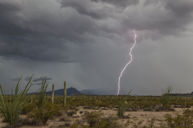 Lightning strikes during an intense thunderstorm that caused flash flooding, on August 14, 2014, in Arizona. (Photo by Roger Hill/Barcroft Media)