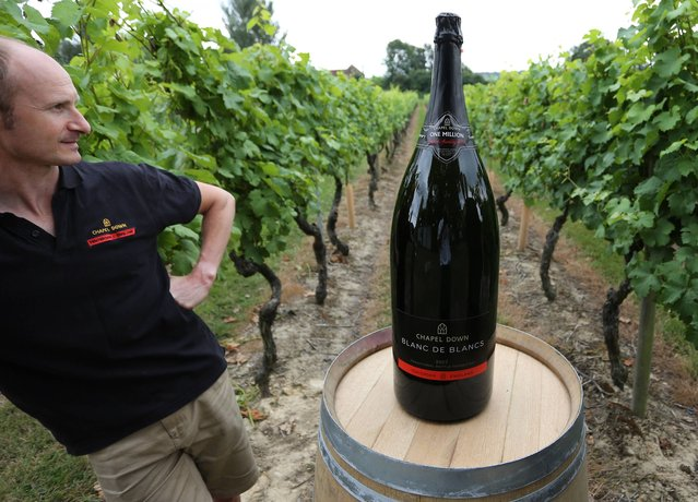 Winemaker Andrew Parley at the Chapel Down Winery in Tenterden, Kent, looks on August 7, 2013 at the 15 litre Nebuchadnezzar bottle, the largest bottle of English Sparkling Wine ever to be made. (Photo by Gareth Fuller/PA Wire)