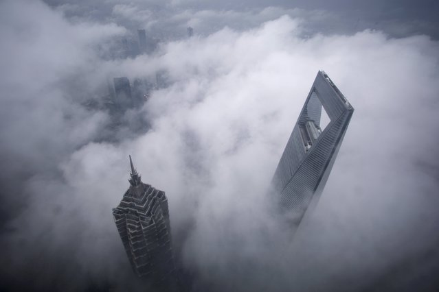 Skyscrapers Shanghai World Financial Center (R) and Jin Mao Tower are seen during heavy rain at the financial district of Pudong in Shanghai, May 15, 2015. (Photo by Aly Song/Reuters)
