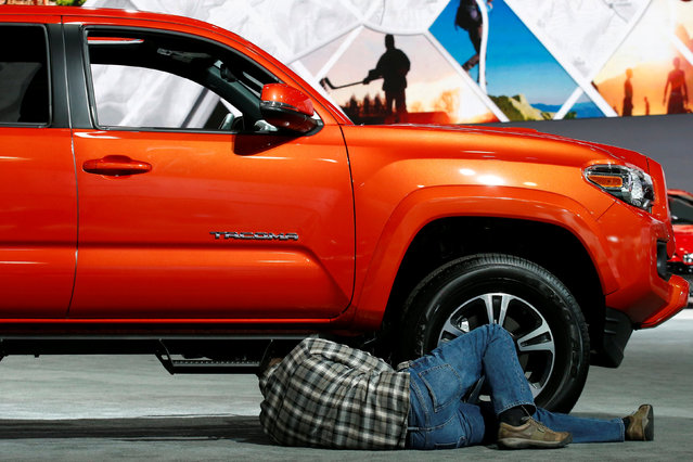 A man looks under a Toyota Tacoma pickup during the North American International Auto Show in Detroit, Michigan, U.S., January 10, 2017. (Photo by Brendan McDermid/Reuters)