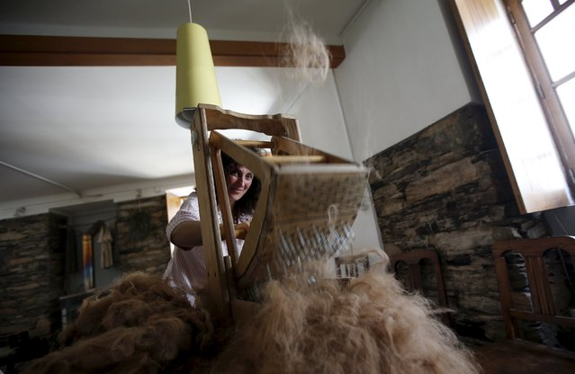 Lisa Vella-Gatt, 46, processes the wool of alpacas at her house in Benfeita, Portugal May 11, 2015. (Photo by Rafael Marchante/Reuters)