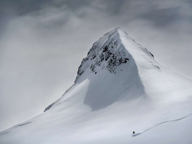 Taking the Plunge by Colin Ronald, Austria: skier heading down a mountain slope in Slovenia. Winner – landscape. (Photo by Colin Ronald/The Nature Conservancy Global Photo Contest 2019)