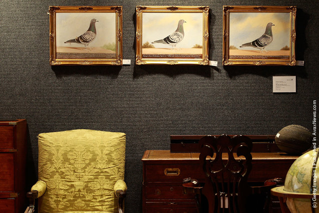 Three paintings by Edward Windred, titled 'War Declared', 'Johns Pride' and 'Consistent' hang on the wall of Bonhams
