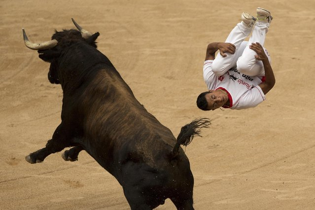 """A """"recortador"""" jumps over a bull during a competition at the San Fermin festival in Pamplona, Spain, Saturday, July 11, 2015. (Photo by Andres Kudacki/AP Photo)"""