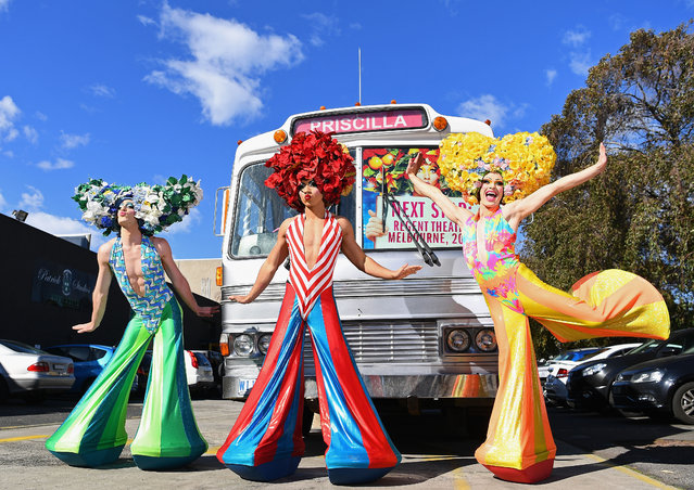 Actors pose infront of the Priscilla bus on August 14, 2017 in Melbourne, Australia. The original Priscilla bus has returned to Melbourne for the first day of auditions ahead of the musical's 10th anniversary tour around Australia. (Photo by Quinn Rooney/Getty Images)