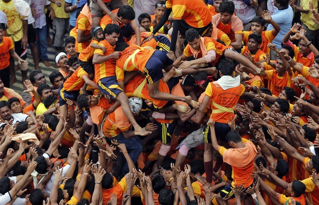 "People fall down as they try to form a human pyramid to break the ""Dahi handi"", an earthen pot filled with curd, an integral part of celebrations to mark Janmashtami in Mumbai, India, Monday, August 18, 2014. (Photo by Rafiq Maqbool/AP Photo)"