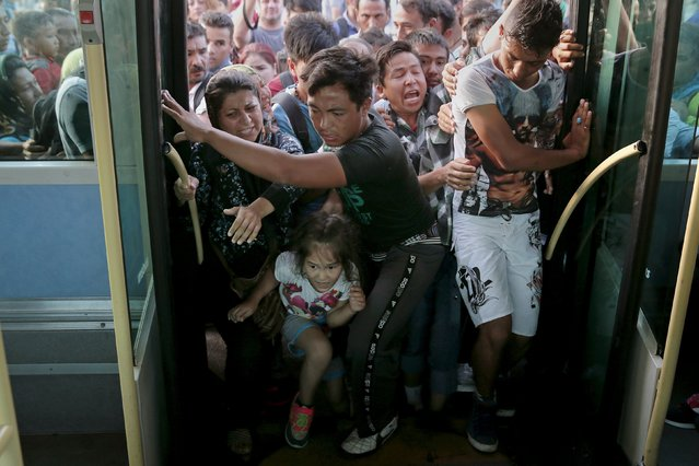 Refugees and migrants push each other as they try to board a bus following their arrival onboard the Eleftherios Venizelos passenger ship at the port of Piraeus, near Athens, Greece September 7, 2015. Greece is struggling to cope with the hundreds of migrants and refugees from the war in Syria making the short crossing every day from Turkey to Greece's eastern islands, including Kos, Lesbos, Samos and Agathonisi. (Photo by Alkis Konstantinidis/Reuters)