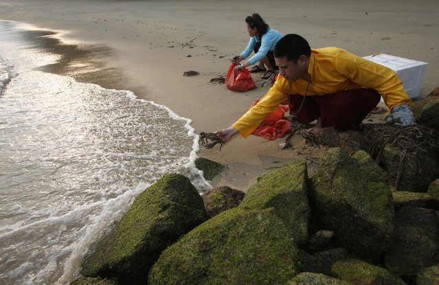 """A Tibetan Buddhist monk releases crabs into the sea ahead of the lunar eclipse in Singapore October 8, 2014. Tibetan Buddhists believe that on Lunar and Solar eclipse, the effect of one's deeds good or bad are multiplied tremendously. Early risers across much of the world were in for a treat on Wednesday morning - a total lunar eclipse, also known as a """"blood moon"""" due to the coppery, reddish color the moon takes as it passes into Earth's shadow. (Photo by Edgar Su/Reuters)"""