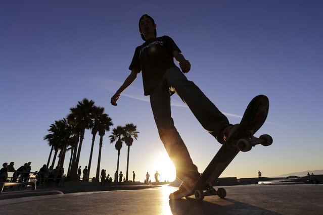 A skateboarder rides at the Venice Skatepark in Venice, California November 7, 2014. (Photo by Jonathan Alcorn/Reuters)