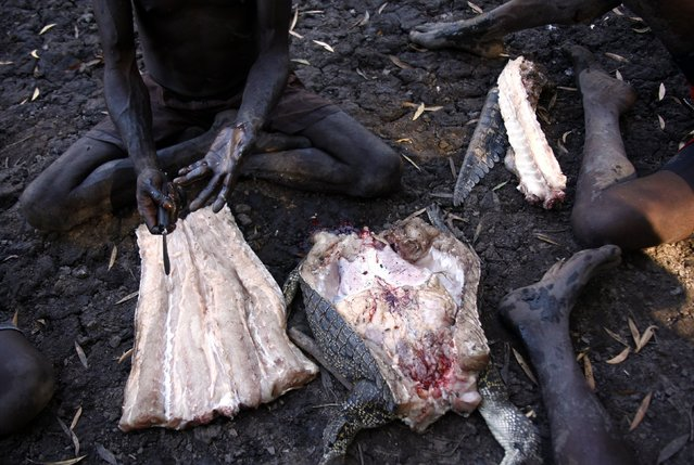 """Australian Aboriginal hunter Roy Gaykamangu of the Yolngu people sits by a billabong and cuts up a crocodile he just shot dead near the """"out station"""" of Yathalamarra, located on the outksirts of the community of Ramingining in East Arnhem Land November 22, 2014. (Photo by David Gray/Reuters)"""