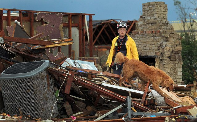A member of Nebraska Task Force-1 and his search dog look through the remains of a in Moore on Tuesday. (Photo by Brad Loper/The Dallas Morning News)