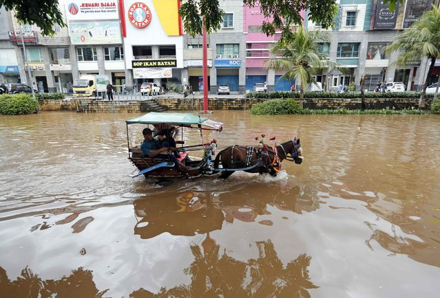 A passenger rides in a horse-drawn carriage down a flooded street after continuous heavy seasonal rains inundated many parts of Jakarta February 10, 2015. (Photo by Darren Whiteside/Reuters)