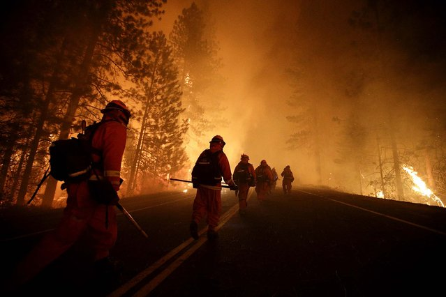 Inmate firefighters walk along state Highway 120 as firefighters continue to battle the Rim Fire near Yosemite National Park, on August 25, 2013. Fire crews are clearing brush and setting sprinklers to protect two groves of giant sequoias as the massive week-old wildfire rages along the remote northwest edge of the park. (Photo by Jae C. Hong/Associated Press)