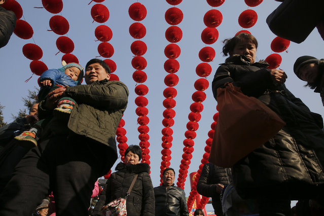 People walk under lanterns at the Longtan park as the Chinese Lunar New Year, which welcomes the Year of the Monkey, is celebrated in Beijing, China February 9, 2016. (Photo by Damir Sagolj/Reuters)