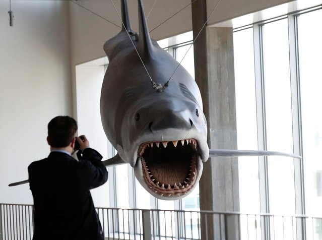 """A member of the media shoots video of the only surviving full-size scale model cast from the original mold used on """"Jaws"""" during a media preview ahead of the opening of the Academy Museum of Motion Pictures in Los Angeles, California, U.S., September 21, 2021. (Photo by Mario Anzuoni/Reuters)"""