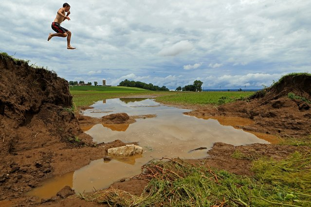 Scott Besselman of O' Fallon, Mo., leaps from one side of the largest of several breaches in a levee near Bob's Creek  in Winfield, Mo., on Friday, June 26, 2015.  Floodwaters caused by heavy rain emptied into land and damaged homes and businesses. Bob's Creek is a Cuivre River tributary. (Photo by Christian Gooden/St. Louis Post-Dispatch via AP Photo)