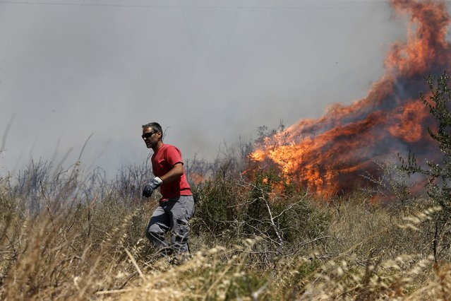 A man turns away from the fire on the mountain of Ymittos in Athens, Friday, July 17, 2015. (Photo by Petros Giannakouris/AP Photo)