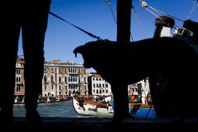 General views of atmosphere during the Regatta Storica during the 72nd Venice Film Festival on September 7, 2015 in Venice, Italy. (Photo by Tristan Fewings/Getty Images)